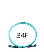 24 Fiber Plenum MTP Elite